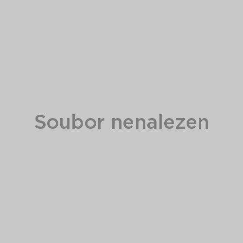 skoda felicia 2000 1.6 серебристый металлик